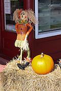 Canada, New Brunswick, The City of Saint John Halloween