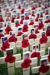© London News Pictures. 08/11/2012. London, UK. Remembrance crosses showing the faces of fallen soldiers  laid out in the grounds of Westminster Abbey following the opening of the Field Of Remembrance on November 08, 2012 . The Field of Remembrance at Westminster Abbey pays tribute to all the brave Service men and women who have served in our Armed Forces since World War I. Photo credit: Ben Cawthra/LNP