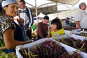 Uzbekistan, Tashkent. Chorsu Bazaar. Grapes.