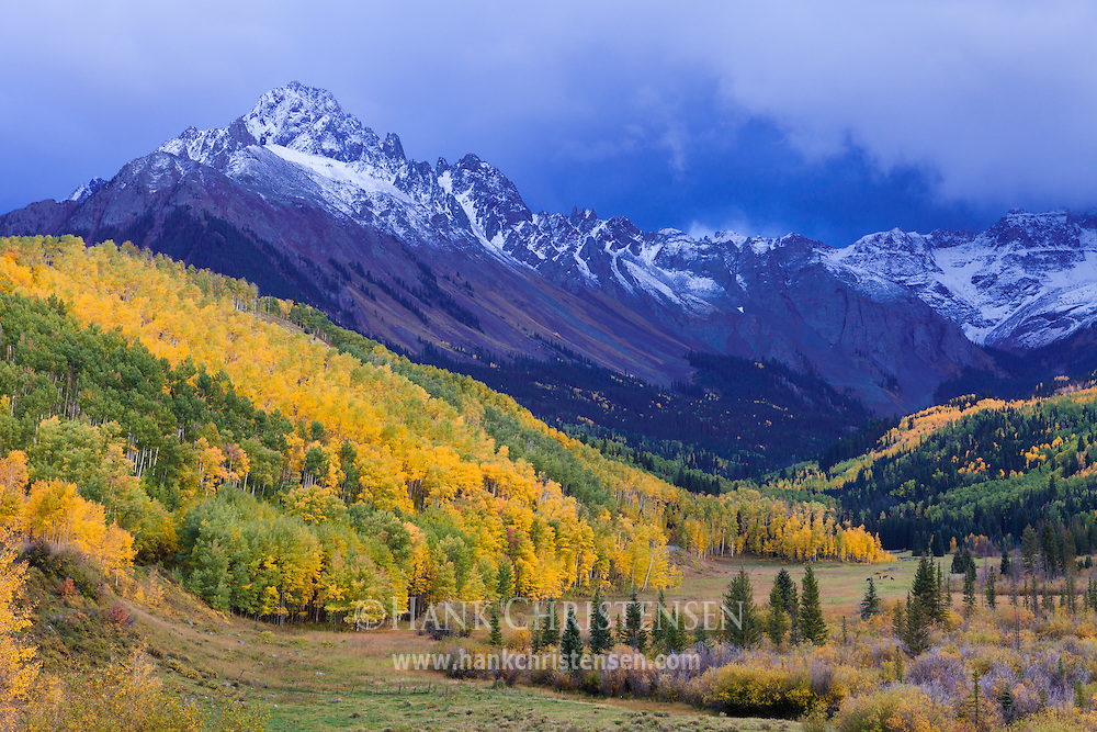 Fall colors cover the lower slopes of Mt. Sneffels, recently dusted with snow from an early storm, Ridgway, Colorado