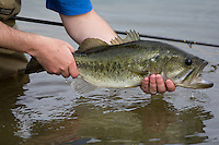 ANGLER WITH A LARGEMOUTH BASS