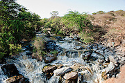 Africa, East Africa, Ethiopia, Etiopia, Horn of Africa, Awash Park, aledeghi Park