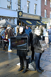 Anonymous for the Voiceless animal rights organisation that specialises in street activism. To promote veganism, footage of animal exploitation is shown to people in Norwich, UK October 2018