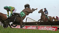 Navan Racecourse: Ladbrokes Boyne Hurdle Raceday - 19 Feb 2017