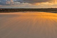 Drifting sand dune, Råbjerg Mile - Skagen, Denmark