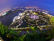 Singapore. Gardens by the Bay, Supertrees at night..