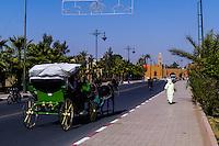 Morocco. Horse cab in Marrakesh.
