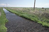 Irrigation canals near Monte Vista, Colorado