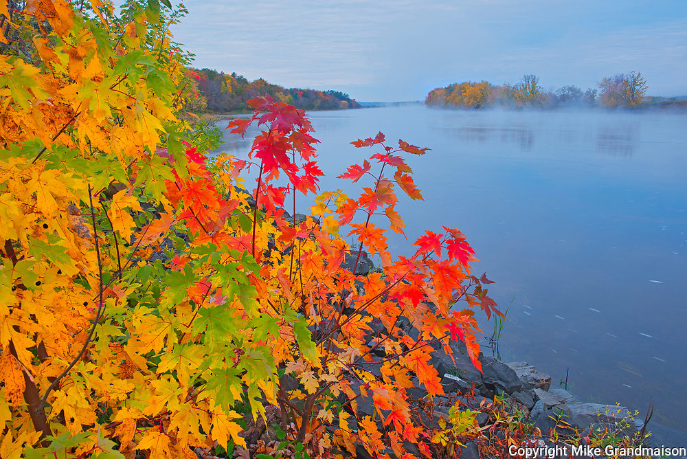 The Saint John River and the Acadian forest in autumn foliage. <br />