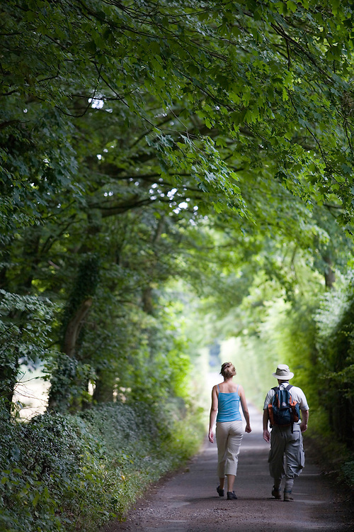 Walkers on the Cotswold Way National Trail between Leckhampton Hill and Crickley Hill, Gloucestershire, UK