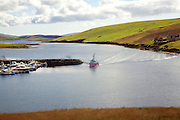 Pink fishing trawler, South Voe, West Burra, Shetland Islands, Scotland