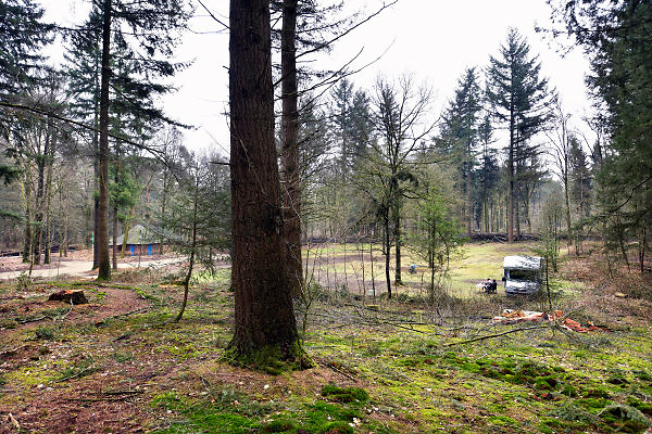 Nederland, Groesbeek, 2-4-2018Op de natuurcamping van staatsbosbeheer. Een jong gezin geniet van de rust.Foto: Flip Franssen