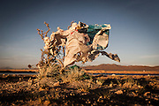 08/11/2014 - Uyuni, Bolivia:Plastic tree #62. Plastic bags are part of the landscape of the Bolivian Altiplano. The accumulation of plastic bags on the environment cause deterioration of the landscapes and agriculture soils and it is associated to the death of domestic and wild animals.
