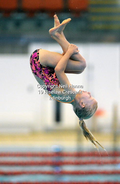 Scottish National Diving Championships & Thistle Trophy 2015<br /> <br /> Royal Commonwealth Pool, Edinburgh<br /> <br /> Event 22  Novice Girls 8/9<br /> <br /> <br />  Neil Hanna Photography<br /> www.neilhannaphotography.co.uk<br /> 07702 246823