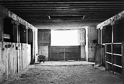 Interior of barn