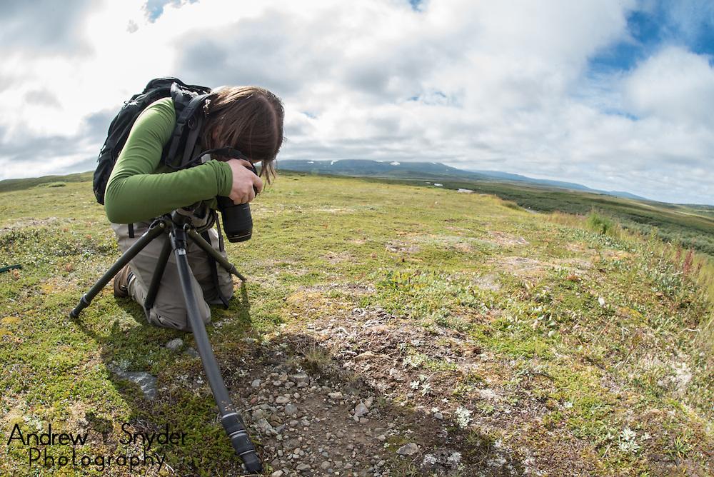 Photographer Gabby Salazar takes a macro image in Alaska - Katmai, Alaska