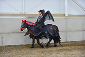 66 - 29th Oct - Halloween Special Show Jumping
