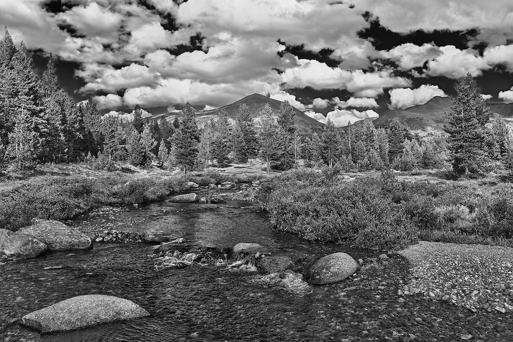 Upper Tuolumne Meadows Stream - Yosemite - HDR - Infrared Black & White