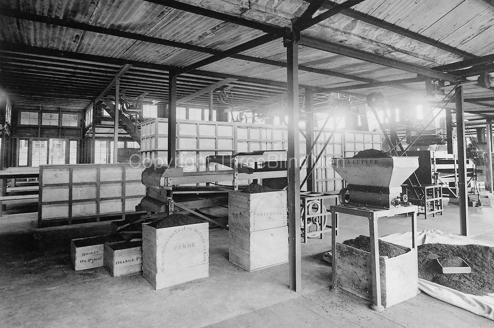Skeen; archival; photograph; tea; machinery; interior, CTTA,