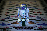 It was a rainy day, and the R2D2 USB port got loose. Image taken with a Nikon D800 camera and 60 mm f/2.8 macro lens (ISO 800, 60 mm, f/3, 1/60 sec).
