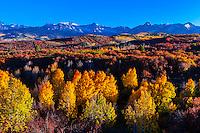 Fall color, Dallas Divide (Sneffels Range in background), near Ridgway, Colorado USA.