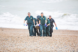 © Licensed to London News Pictures. 30/09/2017. Brighton, UK. The body of a missing swimmer was found on the beach near the Brighton Palace Pier by members of the public. Photo credit: Hugo Michiels/LNP