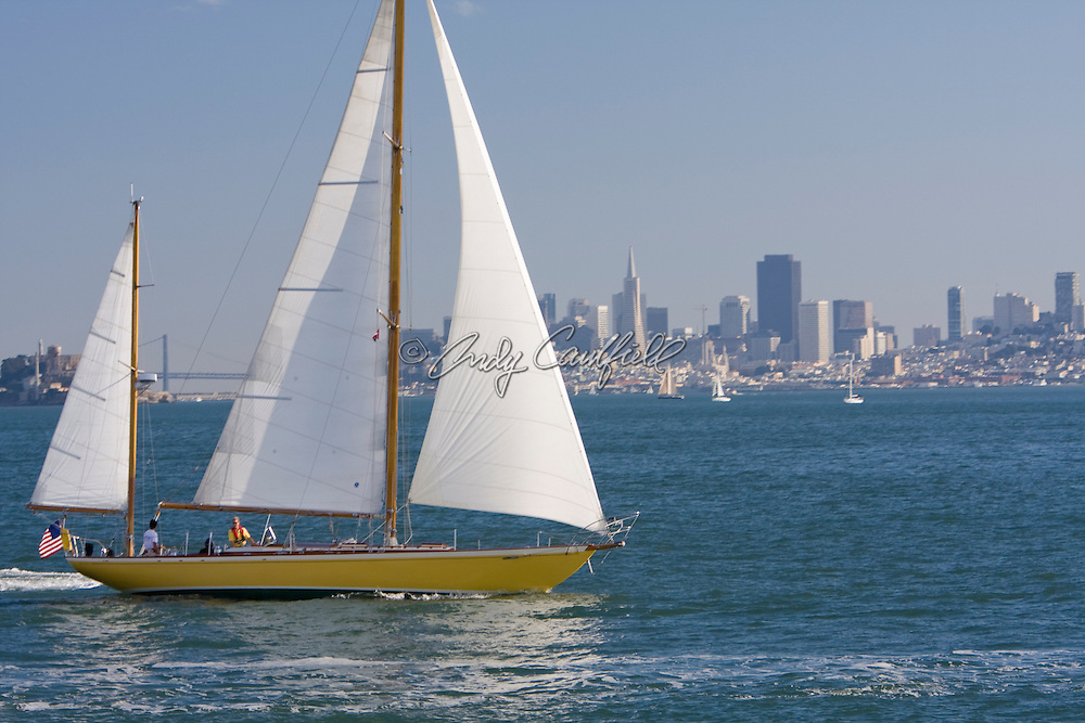 Sailboats and City skyline-San Francisco Bay, CA
