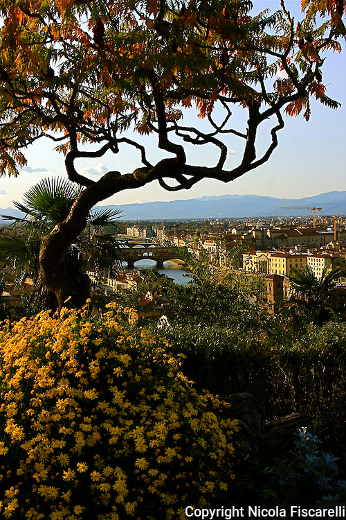 A beautiful city view of  Florence from the           hilltop of the  MIchelangelo Square.