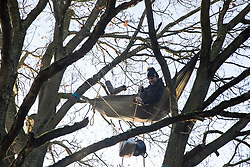Harefield, UK. 21 January, 2020. An activist lying in a hammock suspended high up in a tree at the Save the Colne Valley wildlife protection camp hauls up a pot of breakfast porridge. Activists seeking to protect ancient woodland threatened by the HS2 high-speed rail link continue to occupy both the roadside and woodland sites of the camp having retaken it from bailiffs acting on behalf of HS2 on 18th January. 108 ancient woodlands are set to be destroyed by HS2.
