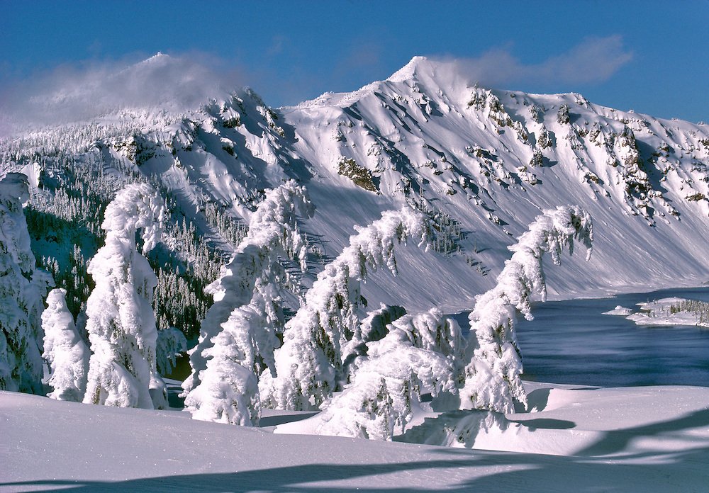 Pines bow under the weight of winter snow in Crater Lake National Park, Oregon. ©Ric Ergenbright