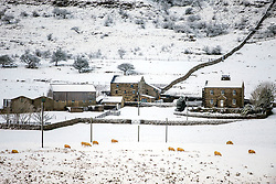 © Licensed to London News Pictures. 22/01/2019. Gearstones  UK. A Snow covered farm in Gearstones after a night of snow fall in the Yorkshire Dales. Photo credit: Andrew McCaren/LNP