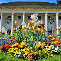Kurhaus Casino Portico and Tulips in Baden-Baden, Germany <br />