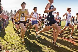 New England High School XC Championship, start of boys race