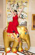 Elephant Parade Island Shangri-La<br /> 11th September 2014.<br /> Pic Jayne Russell +852 97578607.<br /> Date-1.09.14