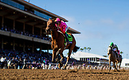 DEL MAR, CA - NOVEMBER 04: Caledonia Road #12 with Mike Smith wins the 14 Hands Winery Breeders' Cup Juvenile Fillies at Del Mar Thoroughbred Club on November 04, 2017 in Del Mar, California. (Photo by Alex Evers/Eclipse Sportswire/Breeders Cup)