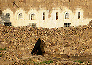 Yemen, Shahara, veiled woman in black, passing by a stone wall like ghost in the sunlight. This image depicts a characteristically Yemeni scene.