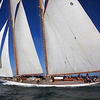 Eleonora J P Morgan Round the island Race 2015