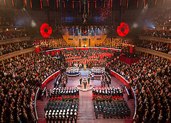 © Licensed to London News Pictures. 09/11/2013.  Men and women from the UK Armed Forces take part in the 2013 Festival of Remembrance.  Bands from the Army, Navy and the Royal Air Force performed in front of Her Majesty The Queen.  Held in the Royal Albert Hall the service commemorated and honoured all those who have lost their lives in conflicts.    Photo credit: Alison Baskerville/LNP