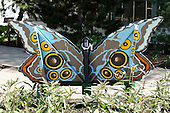 Butterfly Show Gala 2011