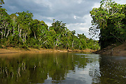 Tiputini River Scenic<br /> Yasuni National Park, Amazon Rainforest<br /> ECUADOR. South America<br /> HABITAT & RANGE: