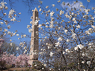 Spring time at The Obelisk in Central Park