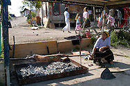 Rome May 6 2008.Rom's camp Casilino 900.Romani bosnian  cooking a lamb for lunch