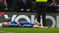 Football - 2016 / 2017 Premier League - Chelsea vs. Hull City <br /> <br /> Gary Cahill of Chelsea lies spreadeagled on the floor in celebration after scoring at Stamford Bridge.<br /> <br /> COLORSPORT/DANIEL BEARHAM