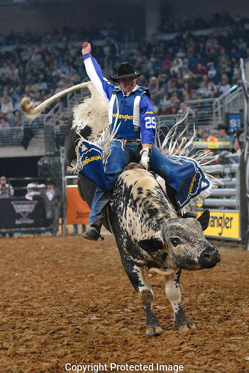 Tough cowboy Steve Woolsey from Payson, Utah, during the bull riding competition.