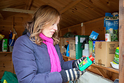 Tidying a shed in winter