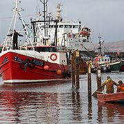 Mallaig Boatyard. Engineer Oliver Weir at the front of the boat, guides the Ranger onto the cradle.  Picture Robert Perry 9th April 2016<br /> <br /> Must credit photo to Robert Perry<br /> FEE PAYABLE FOR REPRO USE<br /> FEE PAYABLE FOR ALL INTERNET USE<br /> www.robertperry.co.uk<br /> NB -This image is not to be distributed without the prior consent of the copyright holder.<br /> in using this image you agree to abide by terms and conditions as stated in this caption.<br /> All monies payable to Robert Perry<br /> <br /> (PLEASE DO NOT REMOVE THIS CAPTION)<br /> This image is intended for Editorial use (e.g. news). Any commercial or promotional use requires additional clearance. <br /> Copyright 2014 All rights protected.<br /> first use only<br /> contact details<br /> Robert Perry     <br /> 07702 631 477<br /> robertperryphotos@gmail.com<br /> no internet usage without prior consent.         <br /> Robert Perry reserves the right to pursue unauthorised use of this image . If you violate my intellectual property you may be liable for  damages, loss of income, and profits you derive from the use of this image.
