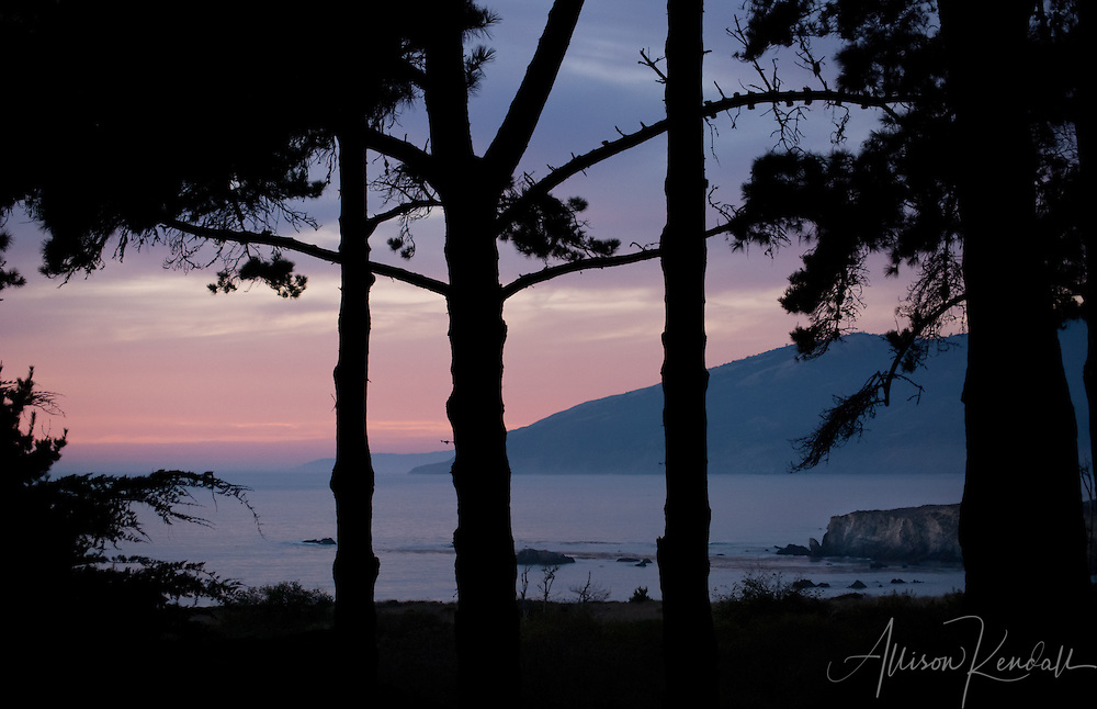 Sunset colors fill the sky over the mountains and beaches of Big Sur, framed by pine trees and forest.