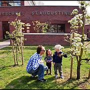 Nederland, Landsmeer, 15-04-2011 Vrijdag tussen de middag. De basisschool gaat uit. Vader bekijkt met zijn zoontje appelboom in tuin van de school. FOTO: Gerard Til / Hollandse Hoogte.