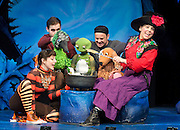 ROOM ON THE BROOM <br /> by JULIA DONALDSON and AXEL SCHEFFLER at the <br /> LYRIC THEATRE, SHAFTESBURY AVENUE, London, great Britain <br /> Press Photocall<br /> 27th November 2014 <br /> <br /> YVETTE CLUTTERBUCK as the Witch<br /> <br /> EMMA MACLENNAN as the Cat<br /> <br /> DAVID GARRUD as the Dog and the Frog<br /> <br /> DANIEL FOXSMITH as the Bird and the dastardly Dragon.<br /> <br /> Photograph by Elliott Franks <br /> Image licensed to Elliott Franks Photography Services