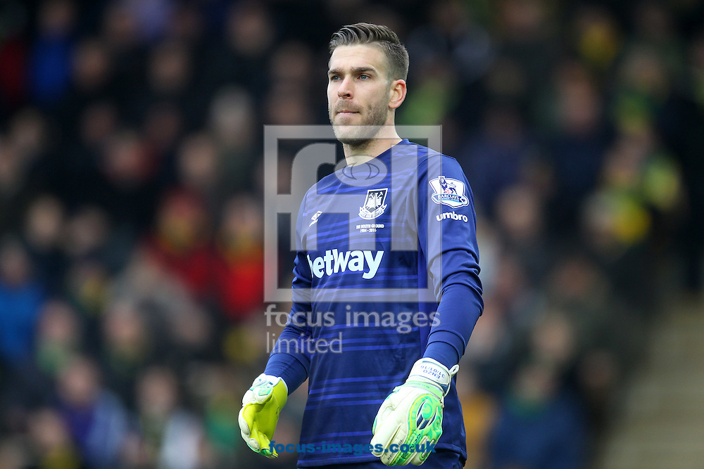 Adrian of West Ham during the Barclays Premier League match at Carrow Road, Norwich<br /> Picture by Paul Chesterton/Focus Images Ltd +44 7904 640267<br /> 13/02/2016